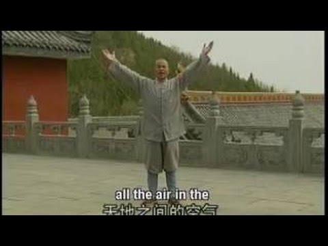 Shi De Yang - Shaolin Xiao Hong Quan 少林小洪拳