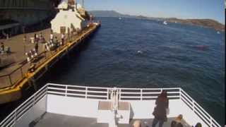 Exclusive video: The first hunt by a great white shark ever recorded in San Francisco Bay
