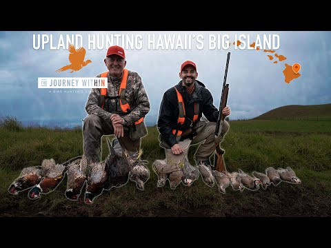 Upland Hunting Hawaii's Big Island: The Journey Within - A Bird Hunter's Diary | Mark Peterson