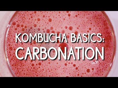Kombucha Basics: Carbonation
