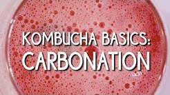 Kombucha Basics: Carbonation