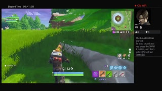 Fortnite gameplay with big brother
