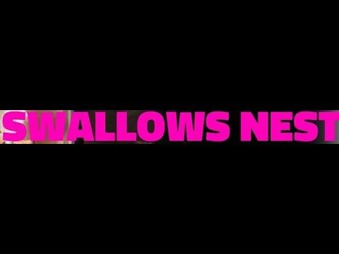 Swallows Nest [2018.03.03] Live At Full Noise 2018 (Full Set)