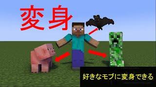 入れ方 スイッチ 変身mod マイクラ
