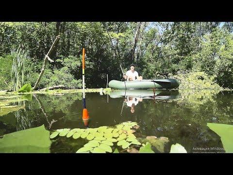 Красивые кадры ловли карася на поплавок!