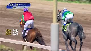 Vidéo de la course PMU PREMIO JILGUERO
