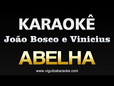 Abelha - João Bosco e Vinícius - KARAOKÊ