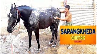 MARWARI HORSE BATH AT CHETAK FESTIVAL SARANGKHEDA