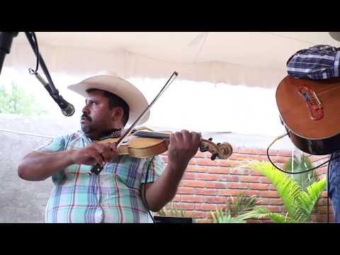 Son Huasteco Con Fidel Cruz Y El Niño En El Violin