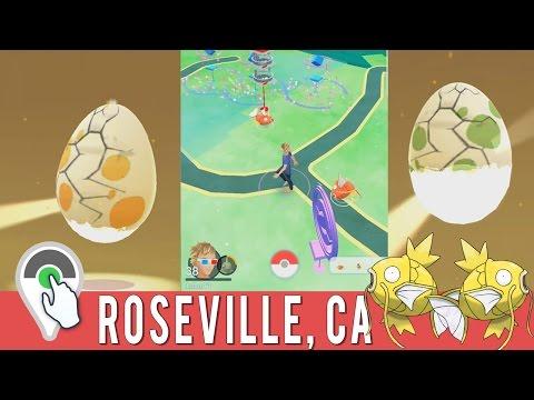 Pokemon GO Daily Adventure! Shiny Magikarp Hunting at Mahany Park Magikarp Nest!
