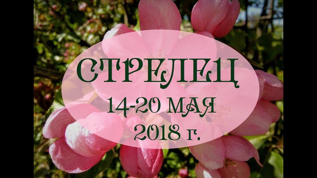 СТРЕЛЕЦ.Таро гороскоп с 14 по 20 мая 2018г. Онлайн гадание.