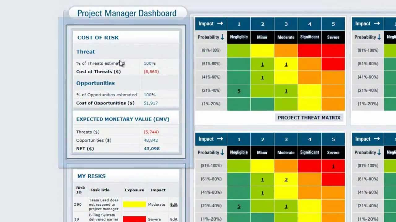 Vue Matrix Project Risk Management Software The Portfolio Manager
