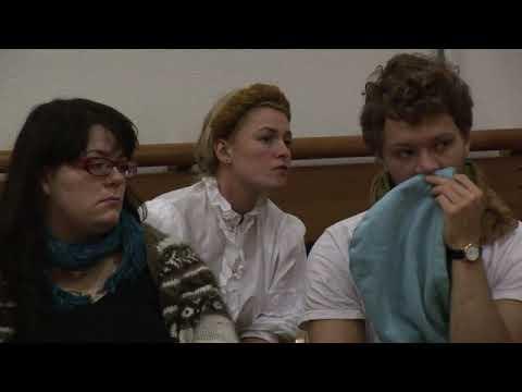 Fake Orgasm Panel Discussion 2010
