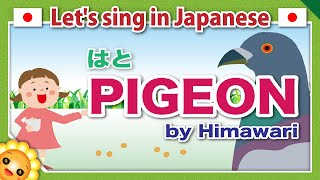 【Pigeon】Japanese children's songs and nursery rhymes【HATO】はと|by Himawari????