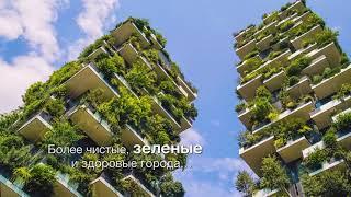 Международный день лесов 2018 года: Леса и устойчивые города