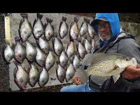 Fall Crappie Are UNREAL In East Texas. Fishing With Friends Pt. 2