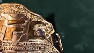 UFS 217 Georges St. Pierre is going to return the champion