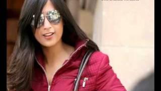 Dilli Ke Deewane Remix Full Song - Movie Hair Is Falling 2011