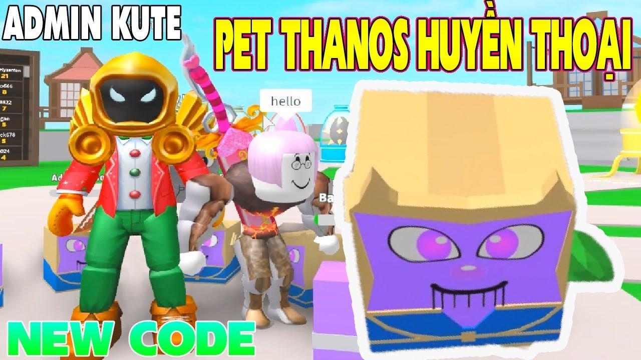 pet paradise roblox codes