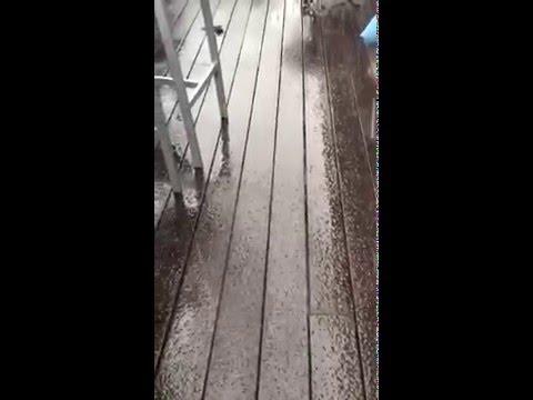 Snowfall in Savannah, Top Deck Rest.
