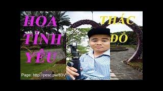 PHƯỢT Vlog #3 Tới Vườn Hoa Tình Yêu và Thác Đỗ - Trải Nghiệm Thực