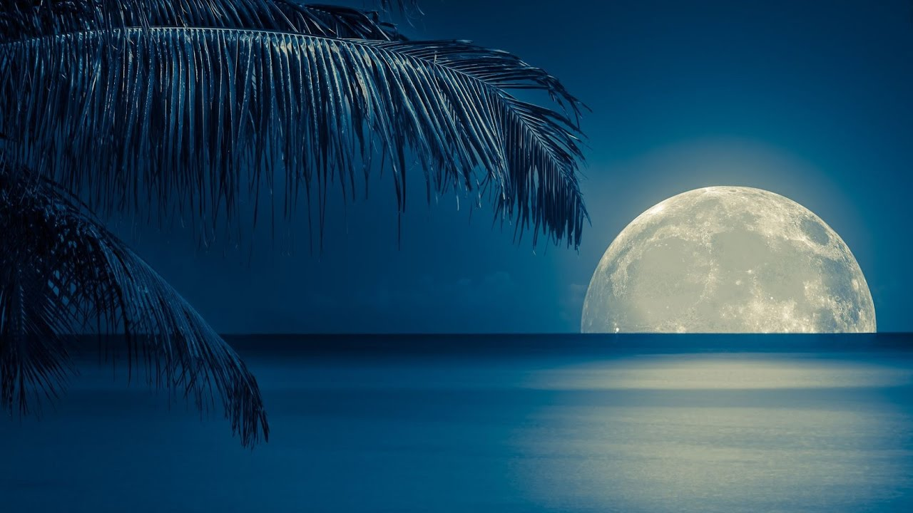 Tropical Island Beach Ambience Sound: Relaxing Sleep Music And Nature Sounds
