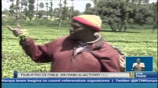 The changing fortunes for tea farmers