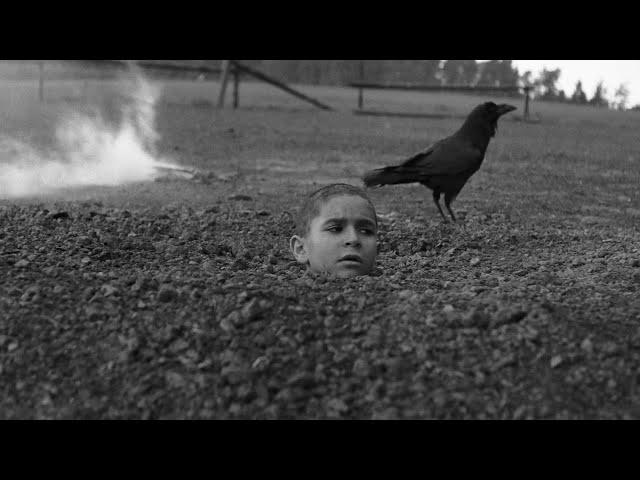 残虐すぎて途中退場者が続出した問題作『異端の鳥』本編映像
