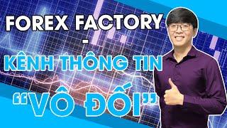 BÍ MẬT FOREX #14 | ForexFactory - Kênh Thông Tin Mọi Traders Phải Biết - mForex