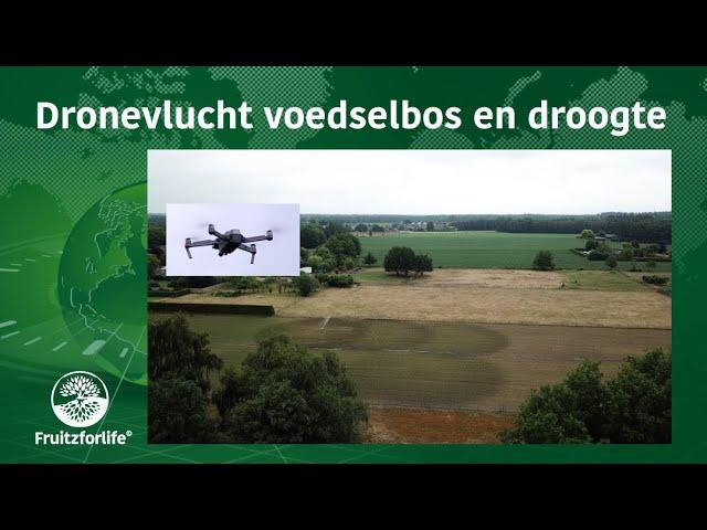Dronevlucht voedselbos en droogte