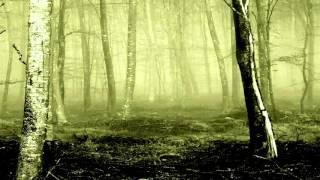 Insomnium -  'Inertia'