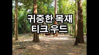 열대지방의 귀중한 목재 티크 우드   Teak wood…