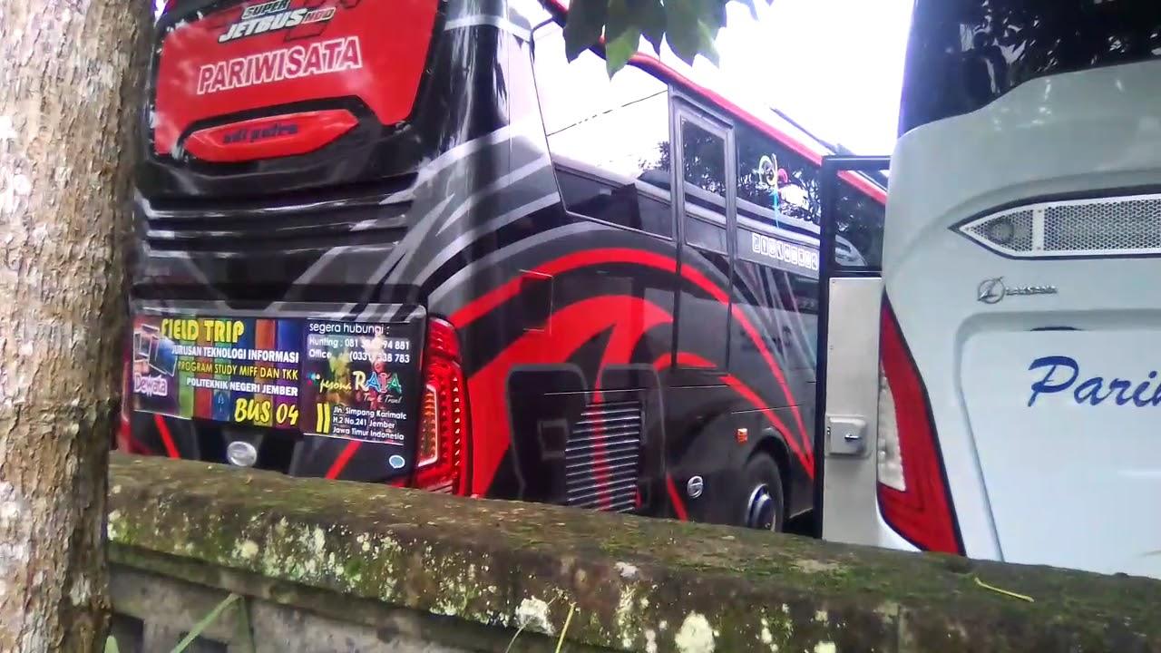 Bus Pariwisata Tour Dibali Youtube Transport Di Bali