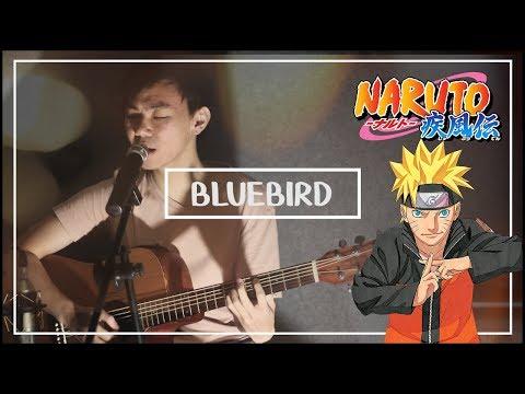 「ブルーバード」Blue Bird (Acoustic Cover) - Naruto Shippuden OP 3
