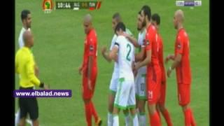 الجزائر وتونس .. هجمات خطيرة للأخضر على مرمى نسور قرطاج خلال 20 دقيقة .. فيديو