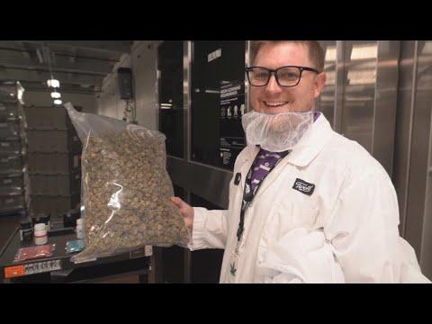 Focus - Supply and demand: A closer look at Canada's legal cannabis market