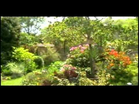 jardin fleuri youtube
