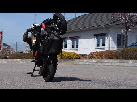 Early Summer Stunt | FSC