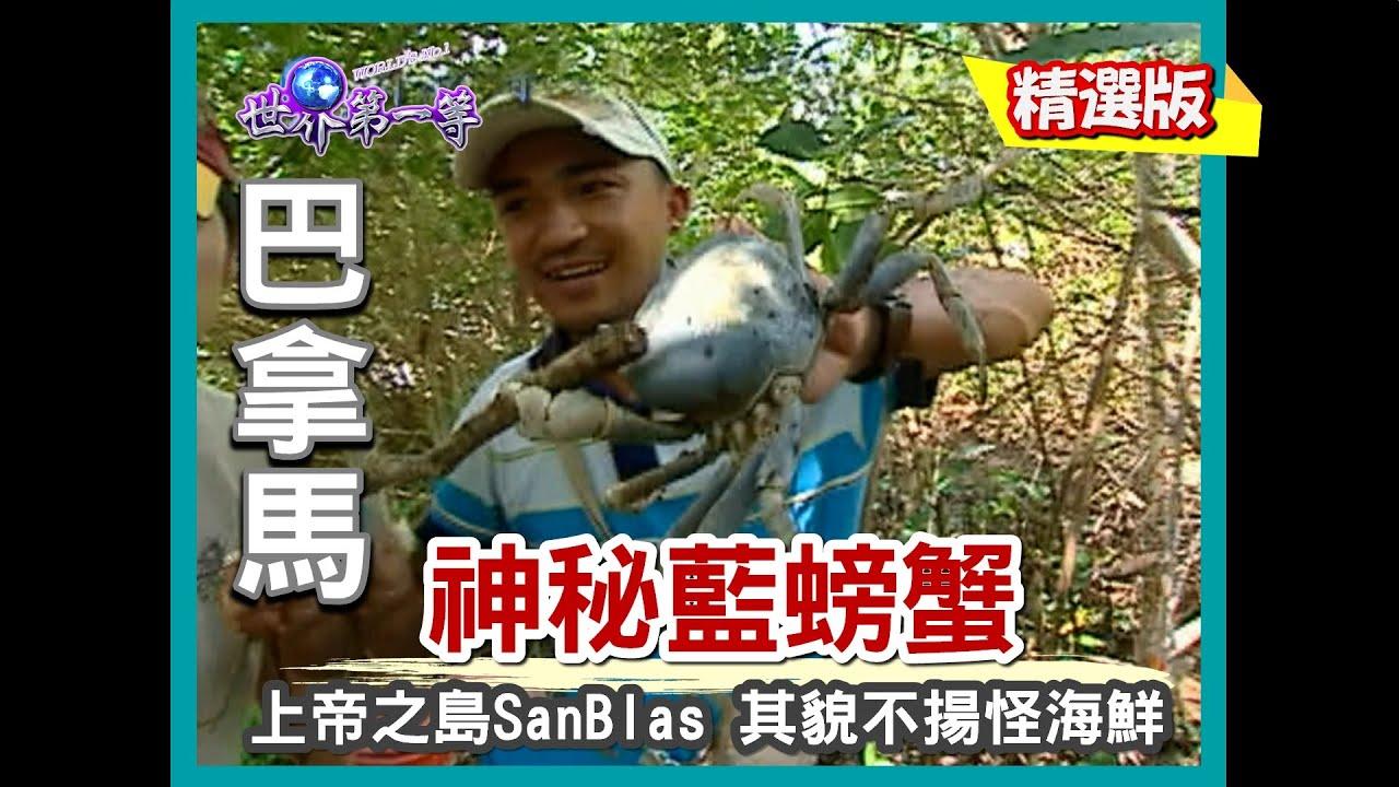 【巴拿馬】上帝之島 San Blas 找尋神秘藍螃蟹 《世界第一等》156小馬精華版