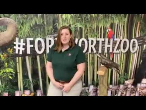 Fort Worth Zoo Keeper Chat - Food Chains