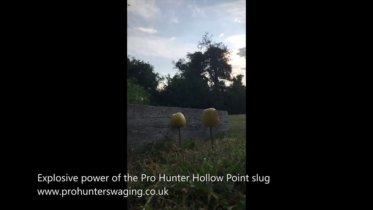 Pro Hunter Hand swaged slugs / pellets for  22  25  30 calibres