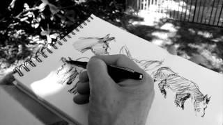 JF Vautrin, croquis au jardin des plantes Paris 5 2016