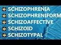 Schizophrenia vs schizophreniform vs schizoaffective vs schizoid vs schizotypal