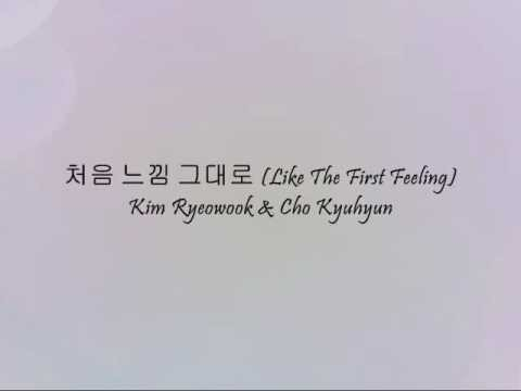 Kim Ryeowook & Cho Kyuhyun - 처음 느낌 그대로 (Like The First Feeling) [Han & Eng]