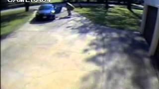 Woman Steals Video 2