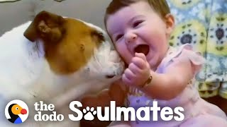 Adorable Kids and Dogs Growing Up Together | The Dodo Soulmates