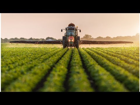 Commodity Merchant Louis Dreyfus Trials Blockchain for Soybean Trade