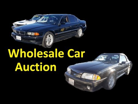 Wholesale Car Auction Save Money Cheap Auto Buying Video