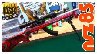 Customize Your Ruger 10/22!
