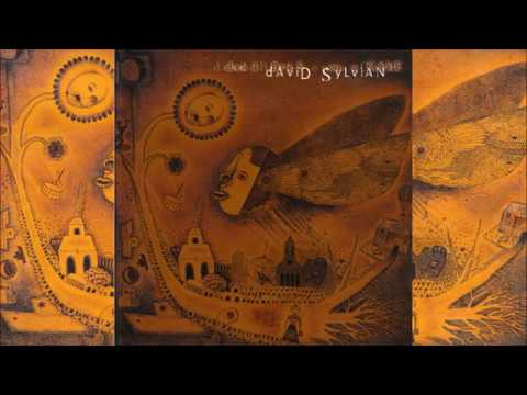 David Sylvian  / Dead Bees on a Cake (Full Album)